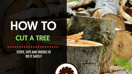 How to Cut a Tree