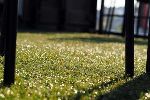 Add artificial grass if you don't have time to upkeep your yard