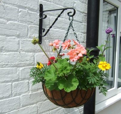 Container gardening - Plant Basket