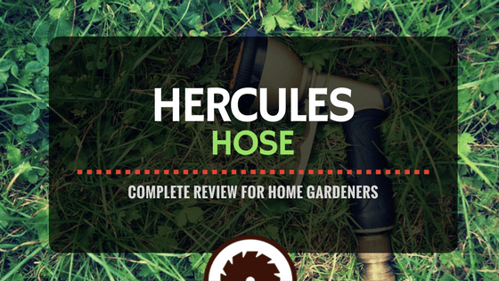 The Complete Hercules Hose Review for Home Gardeners