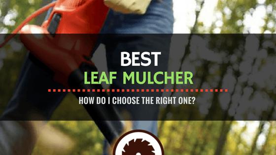 Best leaf mulcher Review