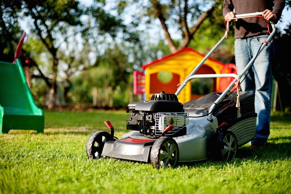 Tips to Save Money on Lawn Care