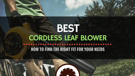Cordless Leaf Blower Review