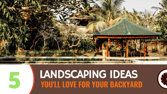 5 Backyard Landscaping Ideas You'll Love