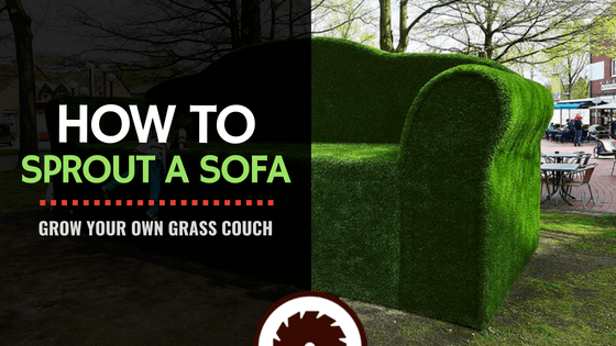Sprout a Sofa: How to Grow Your Own Grass Couch
