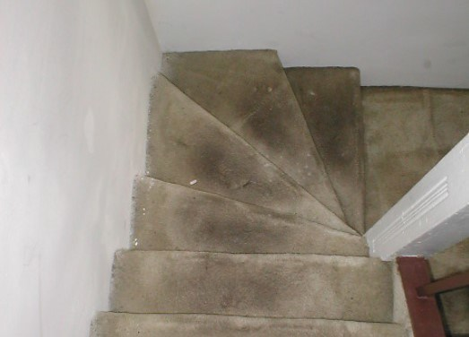 Stairs with light colored carpet full of dark stains