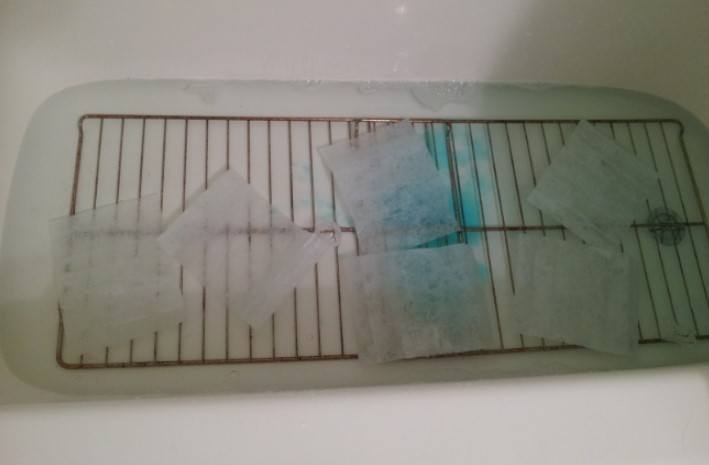 Oven racks inside bath tube filled with water and five dryer sheets