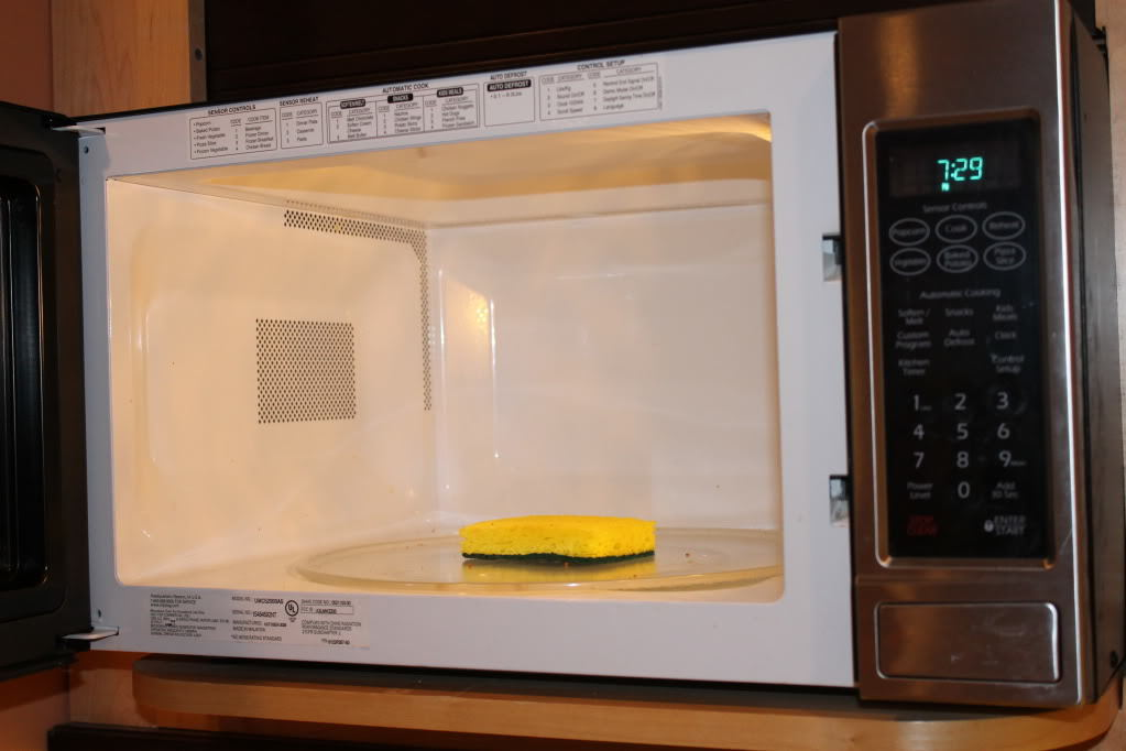 Sponge inside an open microwave with the light on
