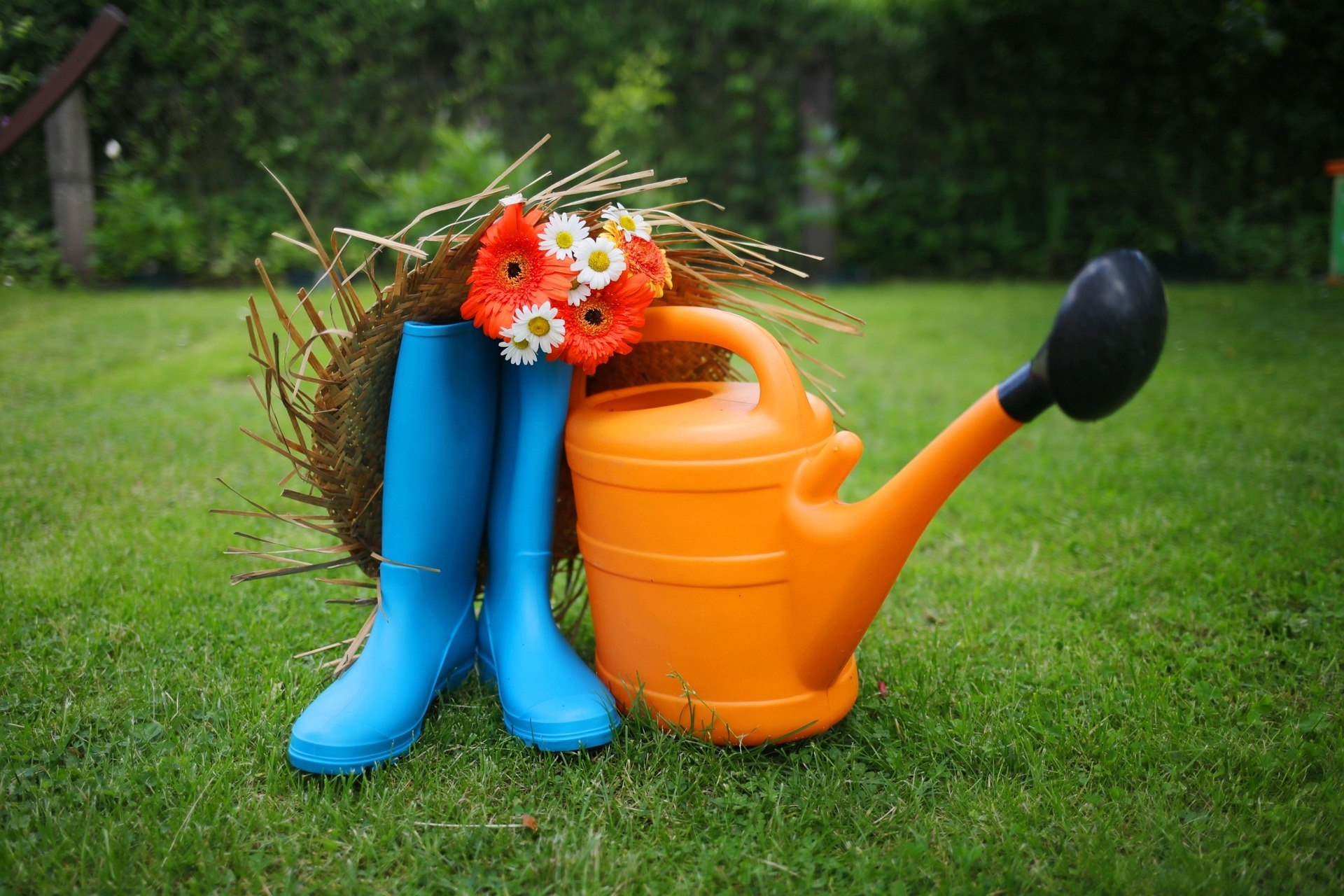 best garden tools-watering can in a garden