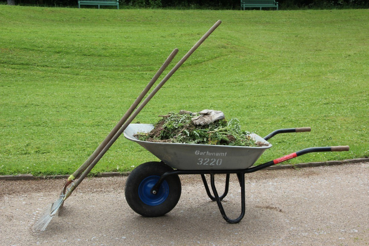 best garden tools-wheelbarrow in a garden