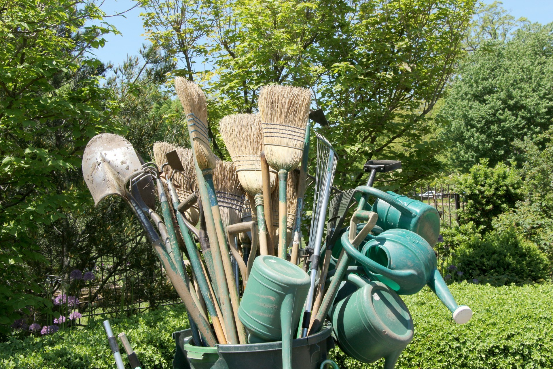 gardening-tools-bundle of gardening tools in a garden