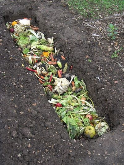 How to Make the Best Compost at Home