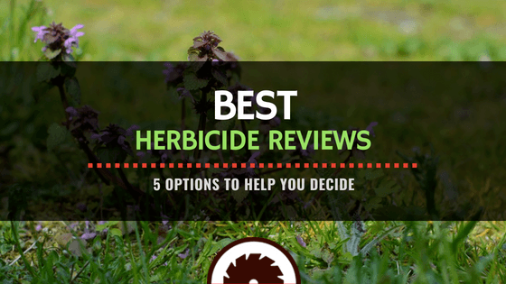 Featured Image - Best Herbicide Reviews